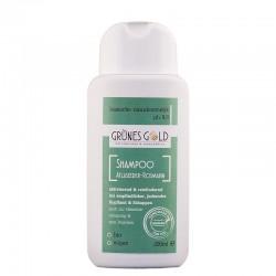 Shampoo Atlaszeder-Rosmarin